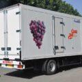 کامیونت توزیع کالا