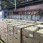 کارخانه تولید کاتالیست یورو 5