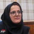 مدیر پژوهش های وزارت صمت